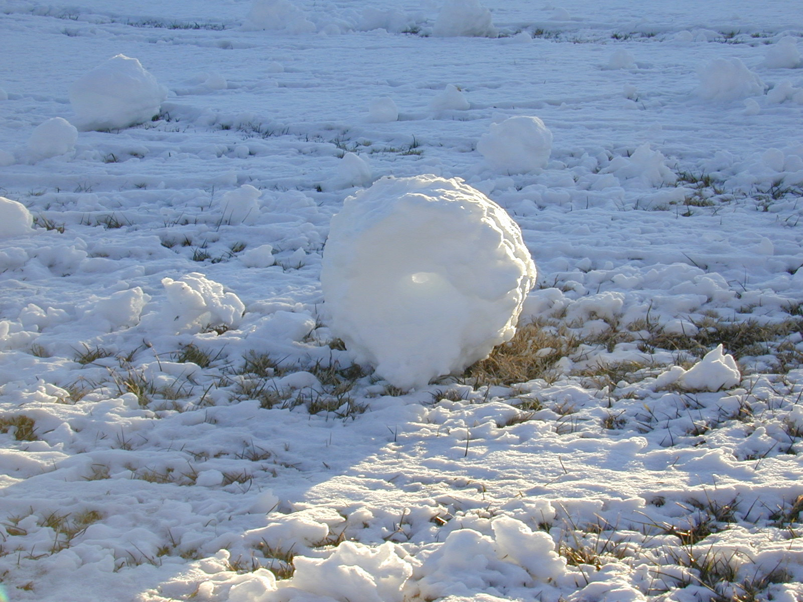 Snow Rollers, February 2003